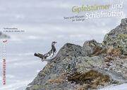 Sonderausstellung «Gipfelstürmer und Schlafmützen – Tiere und Pflanzen im Gebirge»