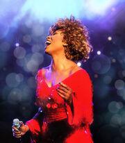 Simply the Best – Das Musical: Das Leben von Tina Turner