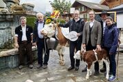 Gründung Verein «Original Simmentaler» – Förderung von Schweizer Zweinutzungskuh-Rasse
