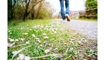 Bleiben Sie zu Hause. Gehen Sie spazieren. Warum erfährt man im neuen Buch der Schweizer Autorin Sabine Claus