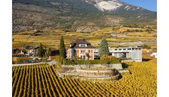 Domaines Chevaliers – Weingenuss, der ins Ohr geht