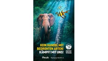 Fondation Franz Weber fordert: Kein Handel mit bedrohten Arten!