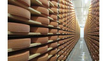 Trotz Coronakrise mehr Schweizer Käse exportiert