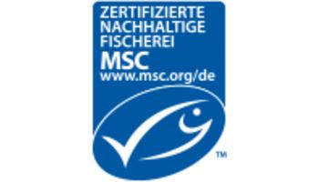 MSC veröffentlicht aktualisierten Umweltstandard für nachhaltige Fischerei