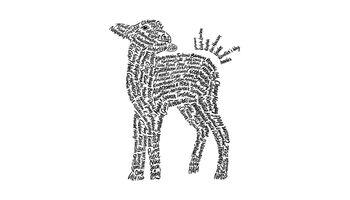 100 Textilmarken gegen «Mulesing»
