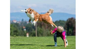Europameisterschaft im Hundefrisbee