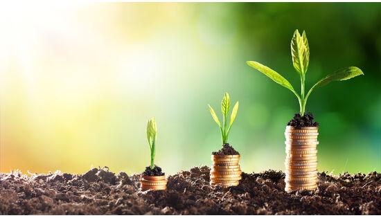 Von Fair-Food bis Langsamverkehr – ein Beitrag an die Vernetzung der Umweltwirtschaft
