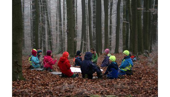 Bild des Benutzers Verein Waldchind Züri