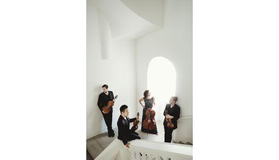 Bild des Benutzers Stradivariquartett